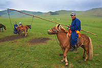 Mongolie, Province de Ovorkhangai, Vallee de l'Orkhon, campement nomade, rassemblement des chevaux, traite des juments // Mongolia, Ovorkhangai province, Okhon valley, Nomad camp, Rallying of horses drove