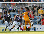 Michael Higdon equalises for Motherwell - Dundee v Motherwell, Clydesdale Bank Scottish Premier League at Dens Park.. - © David Young - 5 Foundry Place - Monifieth - DD5 4BB - Telephone 07765 252616 - email: davidyoungphoto@gmail.com - web: www.davidyoungphoto.co.uk
