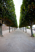 Our Lady of Chartres Cathedral, Chartres, France. Avenue of trees behind the cathedral.