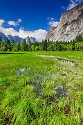 Spring run-off in meadow, Yosemite Valley, Yosemite National Park, California USA