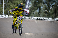 #212 (PETERSONE Vineta) LAT during practice at round 1 of the 2018 UCI BMX Supercross World Cup in Santiago del Estero, Argentina.