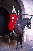 ATBK86 Black horse guard soldier Whitehall London England