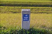 Nederland, Lent, 26-9-2015Een paaltje van het waterschap rivierenland staat aan de dijk. De nummering zorgt voor herkenbaarheid bij onderhoud, inspectie en calamiteiten.FOTO: FLIP FRANSSEN/ HH