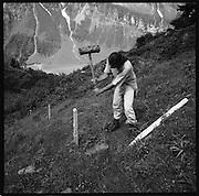 Alpine farming. Gemeinwerk. Bevor die Tiere auf die Alp kommen, müssen die Zäune erstellte werden. Vorbereiten der Alp. Rinderalp mit saisonalen Hirten im Heuloch, Gemeinde Matt, Glarus. © Romano P. Riedo