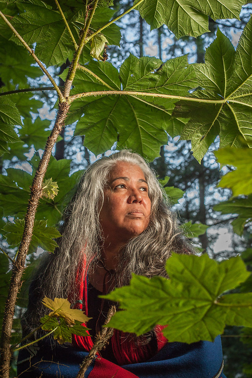 Cass Pook stands among the devil club at Totem National Historic Park in Sitka, Alaska  cathleen.pook@searhc.org