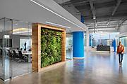Truebridge Capital Partners | Alliance Architecture | Chapel Hill, North Carolina
