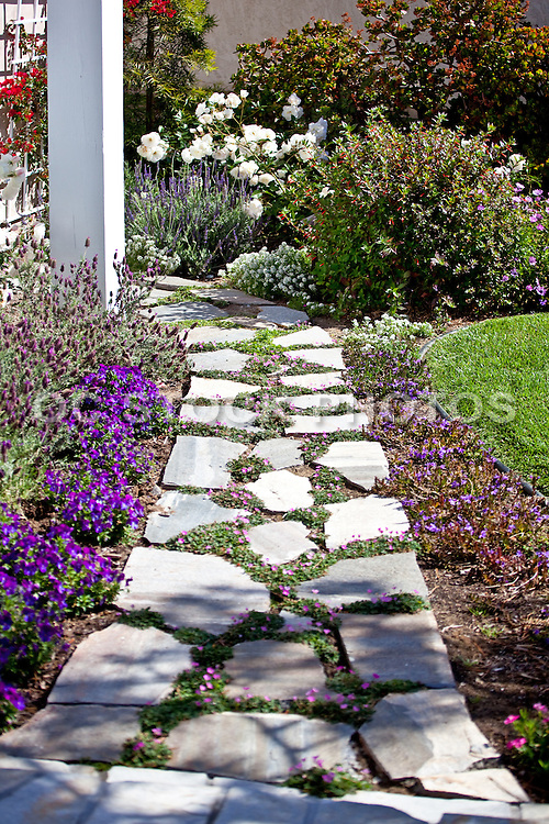 Landscaped Garden Walk With Beautiful Plants