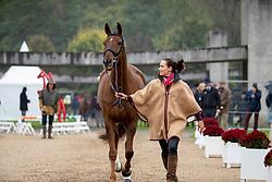 Schnaufer Josephine, GER, Viktor 107<br /> Mondial du Lion - Le Lion d'Angers 2019<br /> © Hippo Foto - Dirk Caremans<br />  16/10/2019