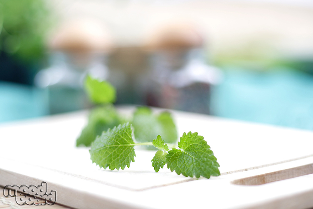 Close up of mint on desk