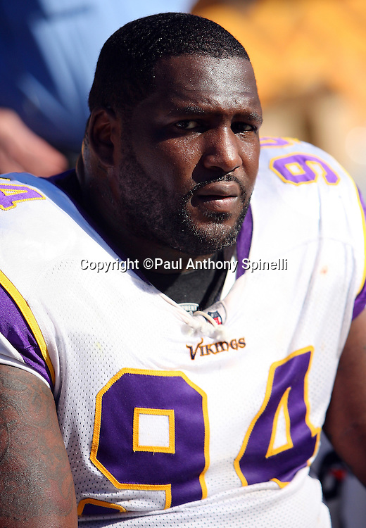 Minnesota Vikings defensive tackle Pat Williams (94) looks on during the NFL football game against the Pittsburgh Steelers, October 25, 2009 in Pittsburgh, Pennsylvania. The Steelers won the game 27-17. (©Paul Anthony Spinelli)