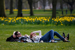 © Licensed to London News Pictures. 03/04/2016. London, UK. People enjoying sunshine and warm weather in Green Park, London on Sunday, 3 April 2016. Photo credit: Tolga Akmen/LNP