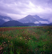 Landscape in Dart valley, Glenorchy, South Island, New Zealand