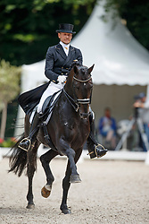 Gal Edward, NED, Glocks Zonik<br /> CDI 3* Grand Prix - CHIO Rotterdam 2017<br /> © Hippo Foto - Dirk Caremans<br /> Gal Edward, NED, Glocks Zonik