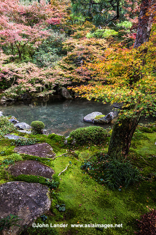 Renge-ji is made up of a pond garden with rocks, bridge, shrubs and moss. .This peaceful garden features a small but beautiful pond set against a hillside of cascading maple foliage.  The pond is located on the immediate north side of the sukiya style structure. While there is a path in the current garden, the site is primarily intended to be viewed from within the structure.