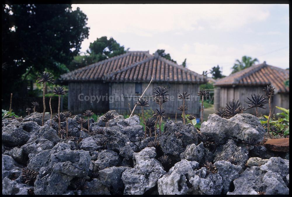 traditional Ryuku house in Taketomi island, Japan / Maison traditionnelle Ryuku, ile de Taketomi, Okinawa, Japon