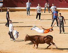 SEP 01 2013 Running of the bulls