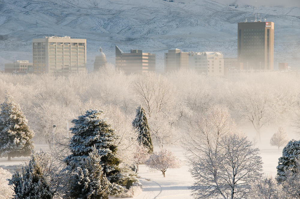 Idaho. Boise. Ann Morrison Park fresh winter snow with city skyline and foothills beyond.