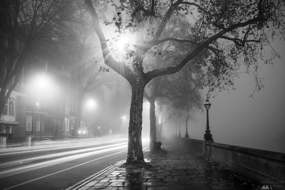Chelsea Embankment in London on a foggy December morning