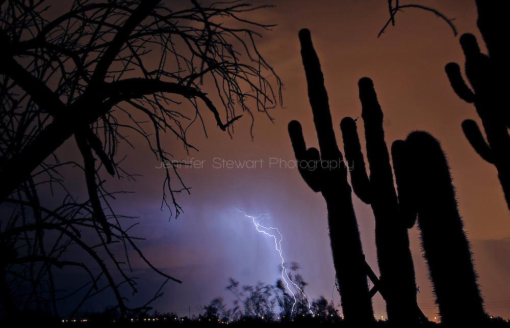 Phoenix, AZ, USA; Lightning strikes in the desert. Mandatory Credit: Jennifer Stewart