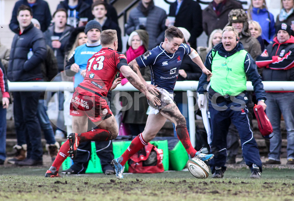 Miles Mantella tries to kick through during the Green King IPA Championship match between London Scottish &amp; Moseley at Richmond, Greater London on 21st February 2015<br /> <br /> Photo: Ken Sparks | UK Sports Pics Ltd<br /> London Scottish v Moseley, Green King IPA Championship, 21st February 2015<br /> <br /> &copy; UK Sports Pics Ltd. FA Accredited. Football League Licence No:  FL14/15/P5700.Football Conference Licence No: PCONF 051/14 Tel +44(0)7968 045353. email ken@uksportspics.co.uk, 7 Leslie Park Road, East Croydon, Surrey CR0 6TN. Credit UK Sports Pics Ltd