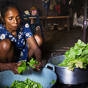 Food workshop Billum Hatu, hamlet of Madabenu. Aidiu district..Food Demonstration..Food is prepared for a Mother Support Group session where breast feeding mothers with 4 months plus babies learn about food supplements. Infant mortality rates are very high in Timor-Leste and one of the reasons for that is poor nutrition. Alola advocate breast feeding til at least two years old and teach women about nutritious supplements such as boiled and mashed rice w vegetabels and eggs.  Fundasaun Alola is a not for profit non government organization operating in Timor Leste to improve the lives of women and children. Founded in 2001 by the then First Lady, Ms Kirsty Sword Gusmao, the organization seeks to nurture women leaders and advocate for the rights of women.