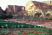 Mali-Dogon country, farmland