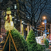 Snowman symbol of Christmas lite up at night  high about the remaining trees.<br /> <br /> You know its Christmas time, one day after Thanksgiving, Christmas trees go on sale on ther streets of New York City. <br /> <br /> A Christmas tree is a decorated tree, usually an evergreen conifer such as spruce, pine, or fir or an artificial tree of similar appearance, associated with the celebration of Christmas.