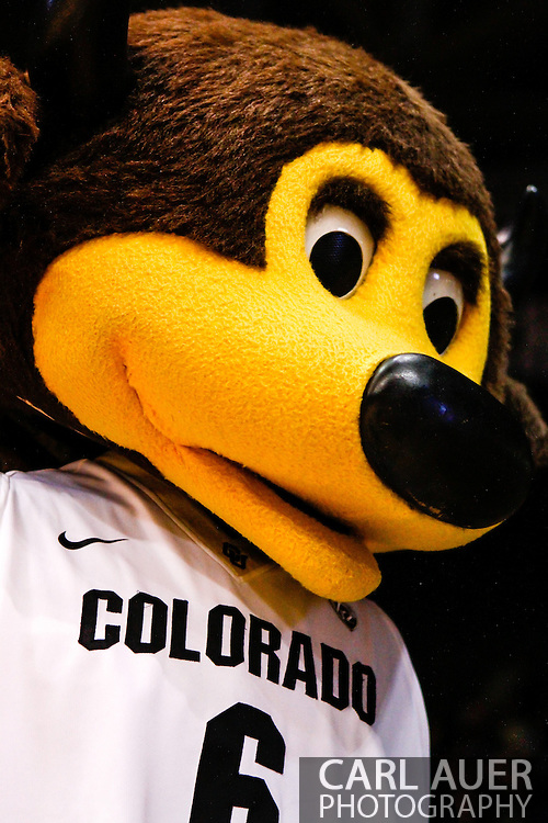 December 28th, 2013:  University of Colorado Buffaloes mascot Chip the Buffalo in action during the second half of the NCAA Basketball game between the Georgia Bulldogs and the University of Colorado Buffaloes at the Coors Events Center in Boulder, Colorado