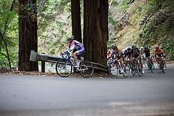Rocio Parrado Guarnizo (COL) of Weber Shimano Ladies Power Cycling Team leads the peloton up on the Harrison Grade Road climb during the third, 111 km road race stage of the Amgen Tour of California - a stage race in California, United States on May 21, 2016 in Santa Rosa, CA.