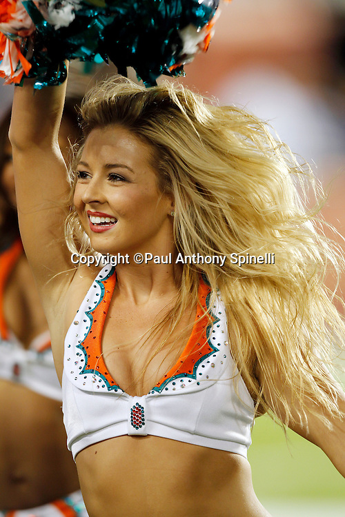 A Miami Dolphins cheerleaders smiles and waves pom poms during the NFL week 11 football game against the Chicago Bears on Thursday, November 18, 2010 in Miami Gardens, Florida. The Bears won the game 16-0. (©Paul Anthony Spinelli)