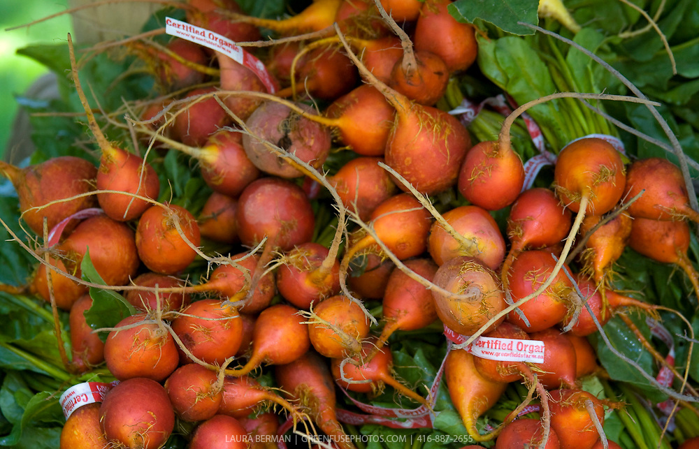 Golden beets at the farmers market.