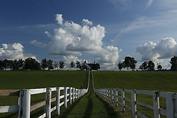 Manchester Farm off Van Meter Road and other locations in Franklin County, Tuesday, Aug. 18, 2015 at Manchester Farm in Lexington.