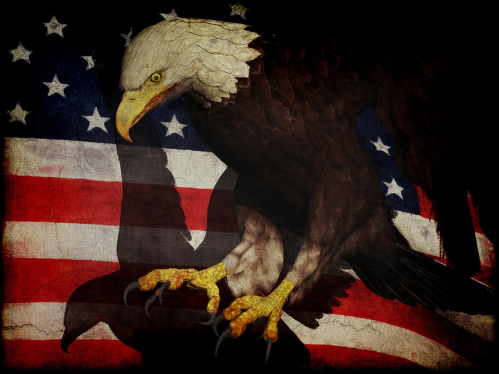 An america eagle with the flag of the USA