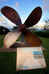 AUSTRALIA QUEENSLAND RAINBOW BEACH 18FEB08 - Propeller of the Cherry Venture, a ship wrecked during a storm near Rainbow Beach and a major tourist attraction to the area...jre/Photo by Jiri Rezac..© Jiri Rezac 2008..Contact: +44 (0) 7050 110 417.Mobile:  +44 (0) 7801 337 683.Office:  +44 (0) 20 8968 9635..Email:   jiri@jirirezac.com.Web:    www.jirirezac.com..© All images Jiri Rezac 2007 - All rights reserved.