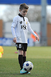 Mascot - Photo mandatory by-line: Dougie Allward/JMP - Mobile: 07966 386802 - 21/02/2015 - SPORT - Football - Colchester - Colchester Community Stadium - Colchester United v Bristol City - Sky Bet League One