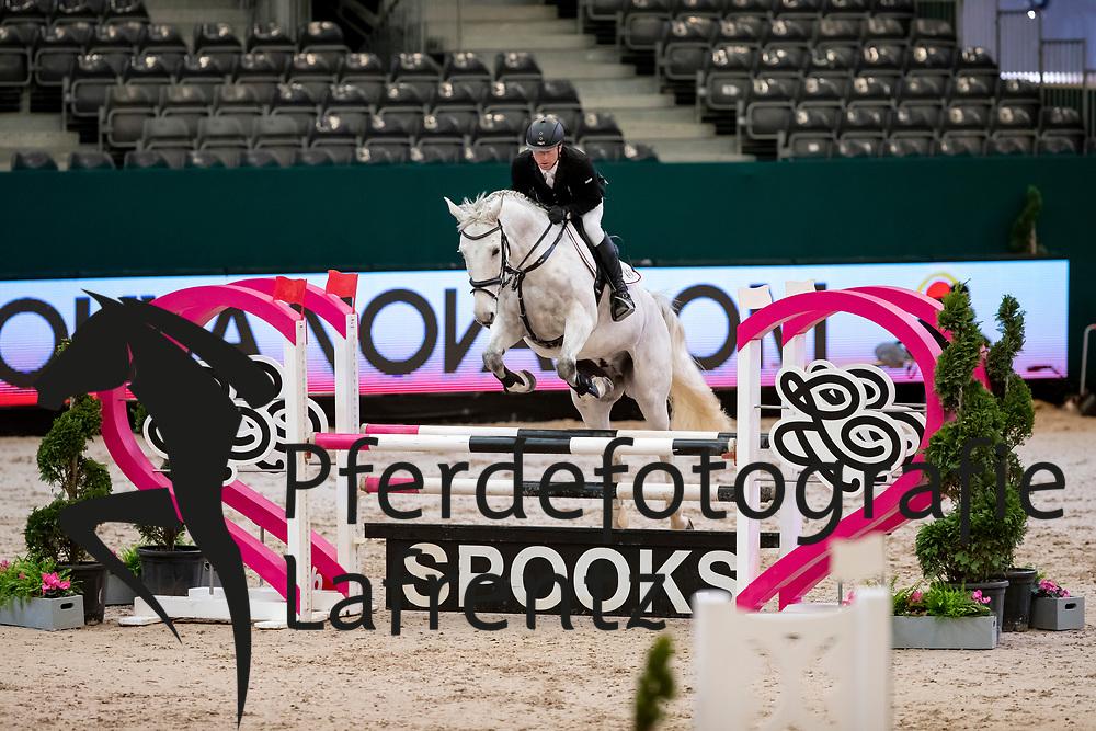 NEUMANN Jens (GER), Colt<br /> Leipzig - Partner Pferd 2019<br /> SPOOKS-Amateur Trophy<br /> Small Tour<br /> 18. Januar 2019<br /> © www.sportfotos-lafrentz.de/Stefan Lafrentz
