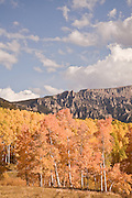 Aspens in shades of orange, yellow and gold brighten the Cimarron Range as fall arrives in Colorado.