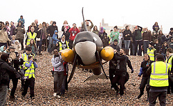 © Licensed to London News Pictures. 14/03/2014. Brighton. A life sized model of a killer whale is released into the water at Brighton today, 14th March 2014, as part of Whalefest, a free public event in association with the Born Free Foundation in aid of the Long Swim to Freedom's campaign. At WhaleFest 2014, the World Cetacean Alliance (WCA) is asking people to help free thousands of whales and dolphins with their Long Swim to Freedom campaign. Photo credit : Hugo Michiels
