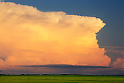 Thunderhead (cumulonimbus) clouds at sunset<br /> Dugald<br /> Manitoba<br /> Canada
