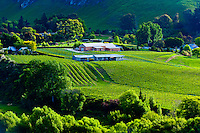 Tuki Tuki Hills, near Napier, Hawkes Bay, north island, New Zealand