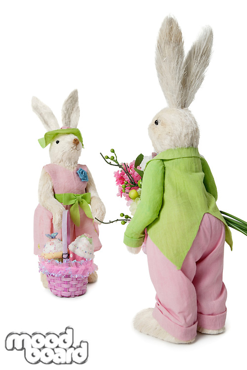 Male and female Rabbits with flower bouquet and basket over white background