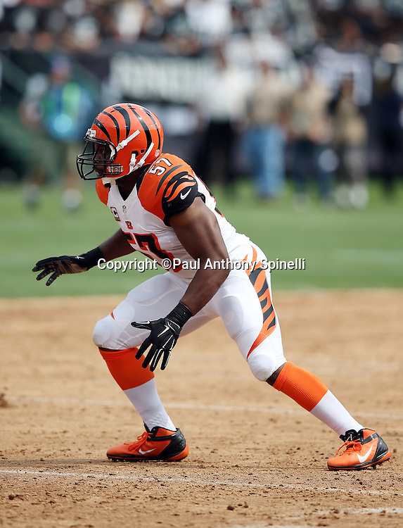 Cincinnati Bengals outside linebacker Vincent Rey (57) chases the action during the 2015 NFL week 1 regular season football game against the Oakland Raiders on Sunday, Sept. 13, 2015 in Oakland, Calif. The Bengals won the game 33-13. (©Paul Anthony Spinelli)