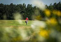 LOCHEM - Hole 4. Lochemse Golf- & Countryclub 'De Graafschap. COPYRIGHT KOEN SUYK