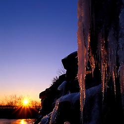 Acadia National Park, ME. Icicles. Sunrise. Cadillac Mountain.  Winter.