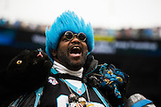 January 17, 2016: Carolina Panthers vs Seattle Seahawks. Carolina Panthers fan