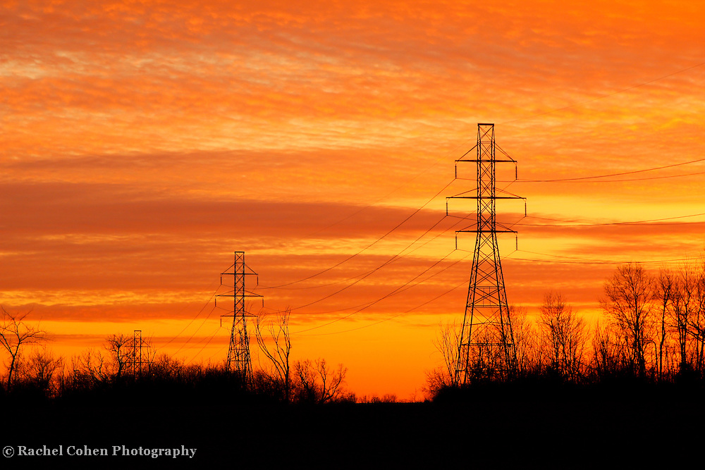 &quot;Midwestern Sunset&quot;<br /> <br /> Vibrant yellow and orange Michigan sunset!<br /> <br /> Sunset Images by Rachel Cohen