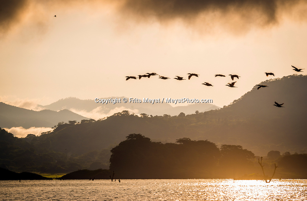 Suchitoto, El Salvador, May 2014. Sunrise over Lake Suchitlan, a former river that was dammed and has an ecosystem that offers much ornithological interest for abundance as well as for the variety of species, pelicans, herons and stork. Set in the tropics and consisting of cloud forests, volcanic lakes and national parks, El Salvador boasts quiet Spanish colonial towns and a glorious coastline with world-class waves. Photo by Frits Meyst / MeystPhoto.com