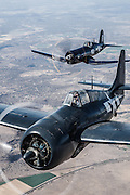 Chance-Vought F4U-7 Corsair and FM-2 Wildcat of the Erickson Aircraft Collection.
