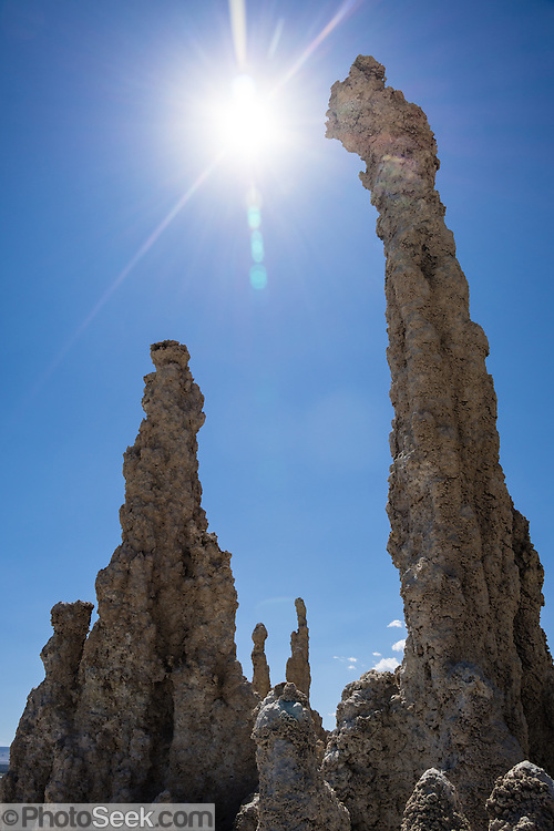 Intriguing towers of calcium-carbonate reach towards the sun at South Tufa Area, Mono Lake Tufa State Natural Reserve, Lee Vining, California, USA. The Reserve protects wetlands that support millions of birds, and preserves Mono Lake's distinctive tufa towers -- calcium-carbonate spires and knobs formed by interaction of freshwater springs and alkaline lake water. Mono Lake has no outlet and is one of the oldest lakes in North America. Over the past million years, salts and minerals have washed into the lake from Eastern Sierra streams and evaporation has made the water 2.5 times saltier than the ocean. This desert lake has an unusually productive ecosystem based on brine shrimp, and provides critical nesting habitat for two million annual migratory birds that feed on the shrimp and blackflies. Since 1941, diversion of lake water tributary streams by the city of Los Angeles lowered the lake level, which imperiled the migratory birds. In response, the Mono Lake Committee won a legal battle that forced Los Angeles to partially restore the lake level.