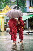 Two monks take shelter from the monsoon rain under an umbrella near the Schwedagon pagoda in Yangon (Rangoon)